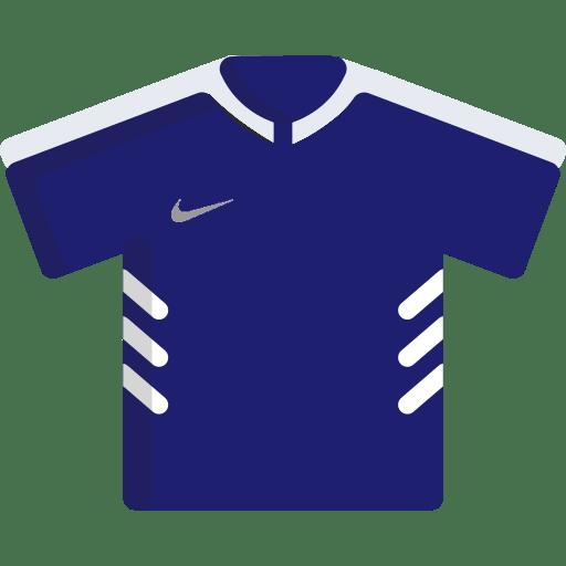 Maillot Nike Anniversaires FFF